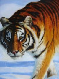 """Картина """"Тигр зимой"""""""